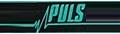 PULS (Китай)