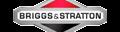BRIGGS & STRATTON (США)